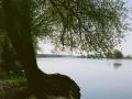 Landschaft_Oder_links