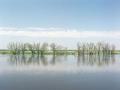 Landschaft_Oder_rechts