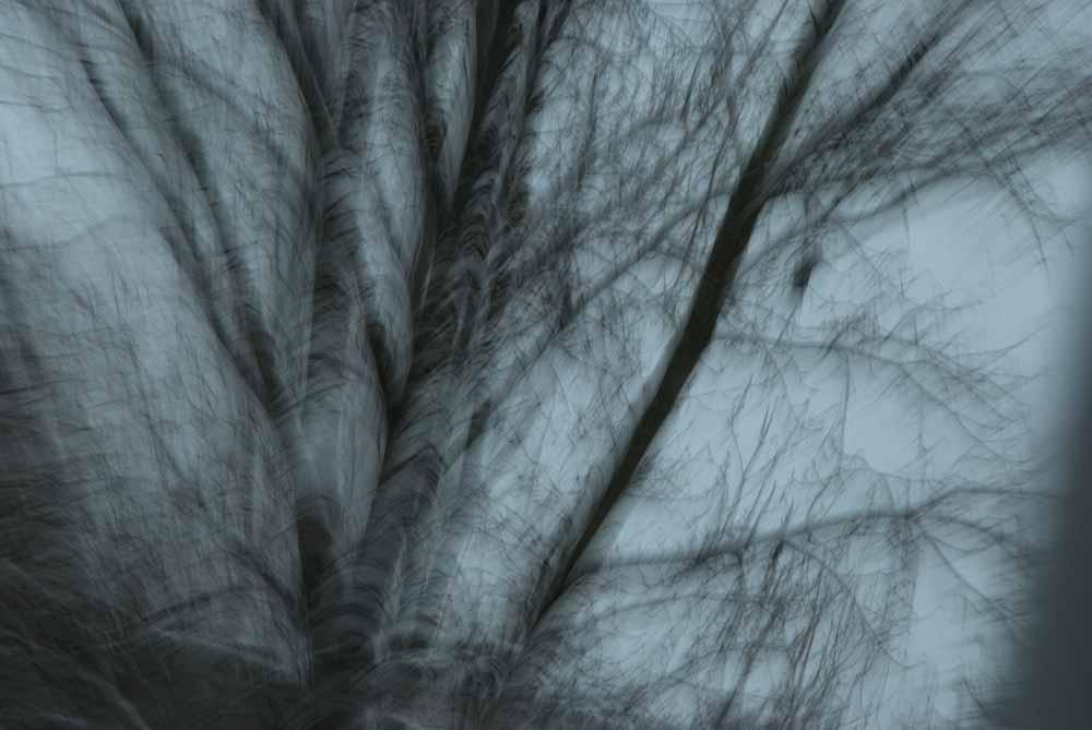 """aus """"Schattenseite"""" © Lena Kilkka"""